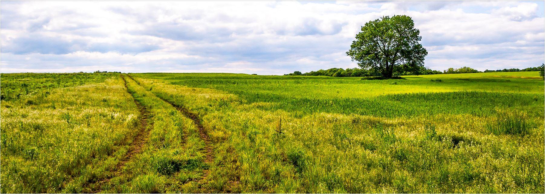 Kansas dickinson county solomon -  Quicklinks Aspx